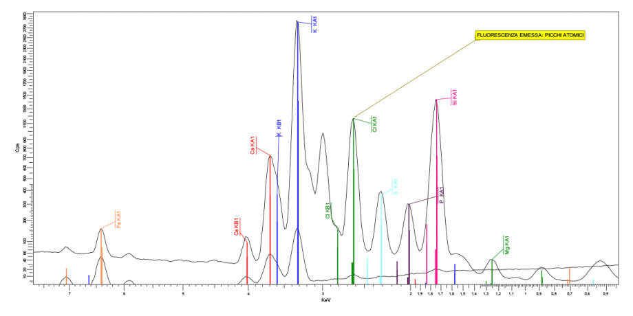 X-ray fluorescence spectroscopy